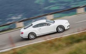 Обои Авто, Bentley, Continental, Белый, GTC, Люкс, Вид сбоку