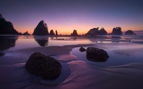 Картинка пляж, вода, деревья, камни, океан, скалы, вечер