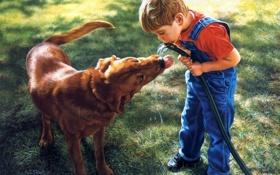 Обои собака, мальчик, арт, шланг, S Thomas Sierak