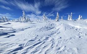 Картинка зима, небо, снег, пейзаж, природа, фото