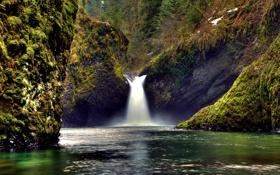 Обои лес, природа, река, ручей, камни, скалы, мох