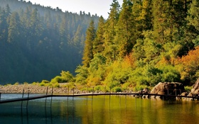 Картинка осень, лес, деревья, мост, озеро, камни, берег
