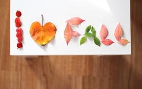 Картинка листья, фон, надпись, обои, настроения, сердце, листочки
