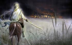 Обои ночь, фантастика, пожар, дождь, огонь, конь, дома