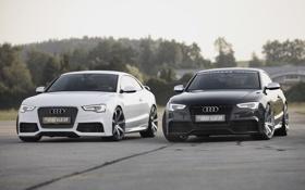 Картинка белый, фон, Audi, чёрный, тюнинг, купе, Ауди
