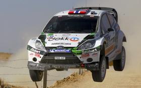 Обои Ford, Белый, Скорость, Гонка, WRC, Rally, Fiesta