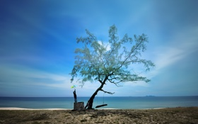 Картинка море, небо, качели, дерево, человек, зонт