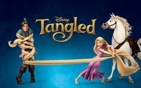 Обои хамелеон, конь, мультфильм, Рапунцель, постер, персонажи, Tangled