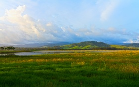 Обои зелень, небо, трава, вода, облака, деревья, пейзаж