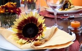 Обои подсолнухи, салфетки, тарелки, ножи, столовые приборы, бокалы, сервировка