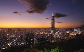 Картинка дом, улица, тайбэй 101, taiwan, небоскрёбы, деревья, дома