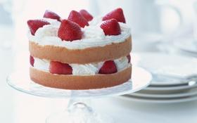 Картинка ягоды, клубника, крем, десерт