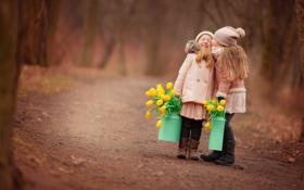 Картинка дорога, лес, радость, дети, настроение, девочки, встреча