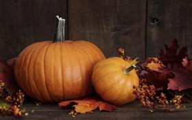 Обои осень, ягоды, листва, тыква, autumn, leaves, pumpkin