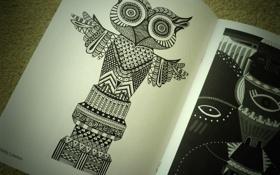 Обои сова, рисунок, журнал