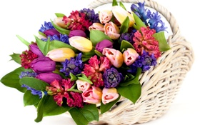 Обои листья, тюльпаны, бутоны, корзина, букет, цветы