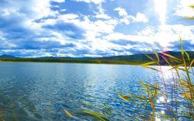 Картинка небо, трава, облака, пейзаж, река, холмы, горизонт
