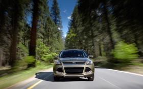 Картинка дорога, Ford, Escape