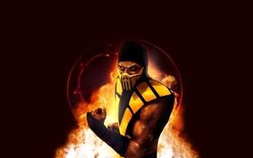 Обои желтый, огонь, скорпион, fire, ниндзя, кулак, scorpion