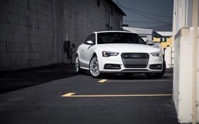 Картинка Audi, ауди, белая, перед, white, front