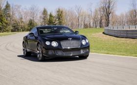 Картинка Авто, Bentley, Continental, Черный, Le Mans, Машина, Капот