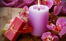 Обои цветы, свеча, мыло, орхидеи, soap, flowers, candle