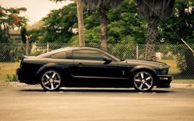 Обои Mustang, Ford, black