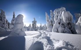 Обои зима, снег, winter, финляндия, finland