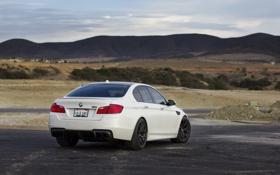 Обои горы, BMW, БМВ, вид сзади, f10, линия горизонта, matte white