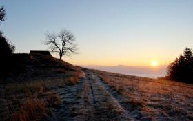 Обои небо, солнце, пейзаж, природа, красота, утро