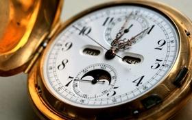 Картинка макро, время, золото, стрелки, часы, циферблат, обед