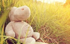 Картинка трава, игрушка, бегемот