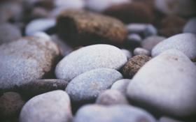 Картинка камни, галька, много