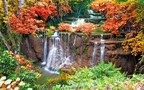 Обои деревья, осень, листва, водопад