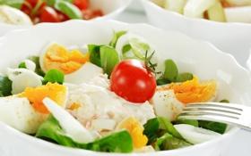 Обои яйцо, помидор, зелень, tomato, сыр, майонез, салат
