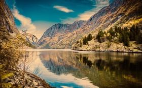 Картинка лес, горы, природа, озеро, Норвегия, Sogn og Fjordane Fylke, Gudvangen