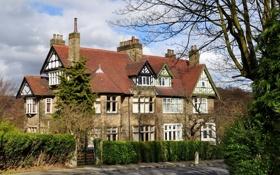 Обои деревья, дом, здание, Англия, Великобритания, England, Great Britain