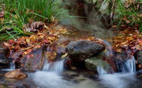 Обои осень, трава, листья, ручей, камни, водопад