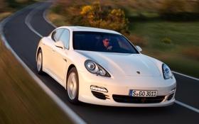 Обои дорога, белый, Porsche, Panamera, порше, кусты, панамера