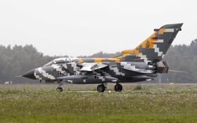 Картинка истребитель, бомбардировщик, аэродром, Panavia Tornado, ECR