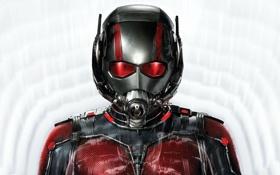 Обои фон, фантастика, костюм, шлем, супергерой, комикс, Человек-муравей