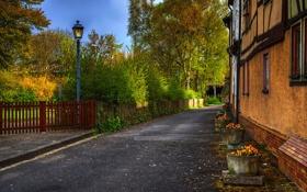 Обои дорога, улица, фонарь