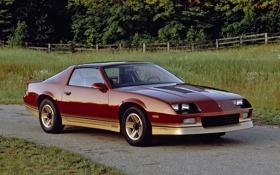 Обои Chevrolet, Camaro, шевроле, классика, камаро, Z28, 1985