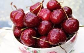 Обои черешня, cherry, delicious, вкусная черешня, red cherry