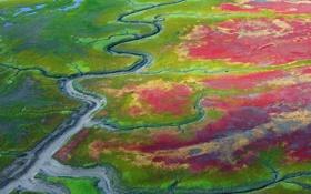 Обои Аляска, США, национальный парк Катмай, ватты, после отлива, осушка, прибрежные отмели