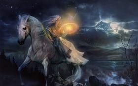 Обои Девушка, ночь, водоем, птицы, луна, деревья, магия