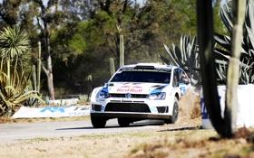 Обои Авто, Белый, Volkswagen, Скорость, WRC, Rally, Фольксваген