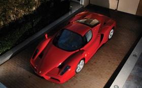 Обои Ferrari, Enzo, 2003