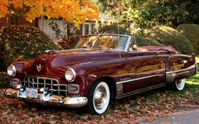 Обои деревья, листва, Cadillac, кабриолет, кусты, кадилак, бордовый