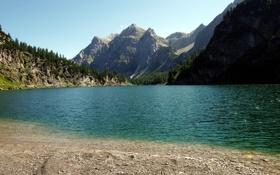 Обои лес, вода, горы, озеро, камни, ель, солнечно